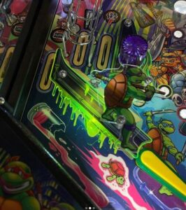 Teenage Mutant Ninja Turtles Pinball Plastic Protectors